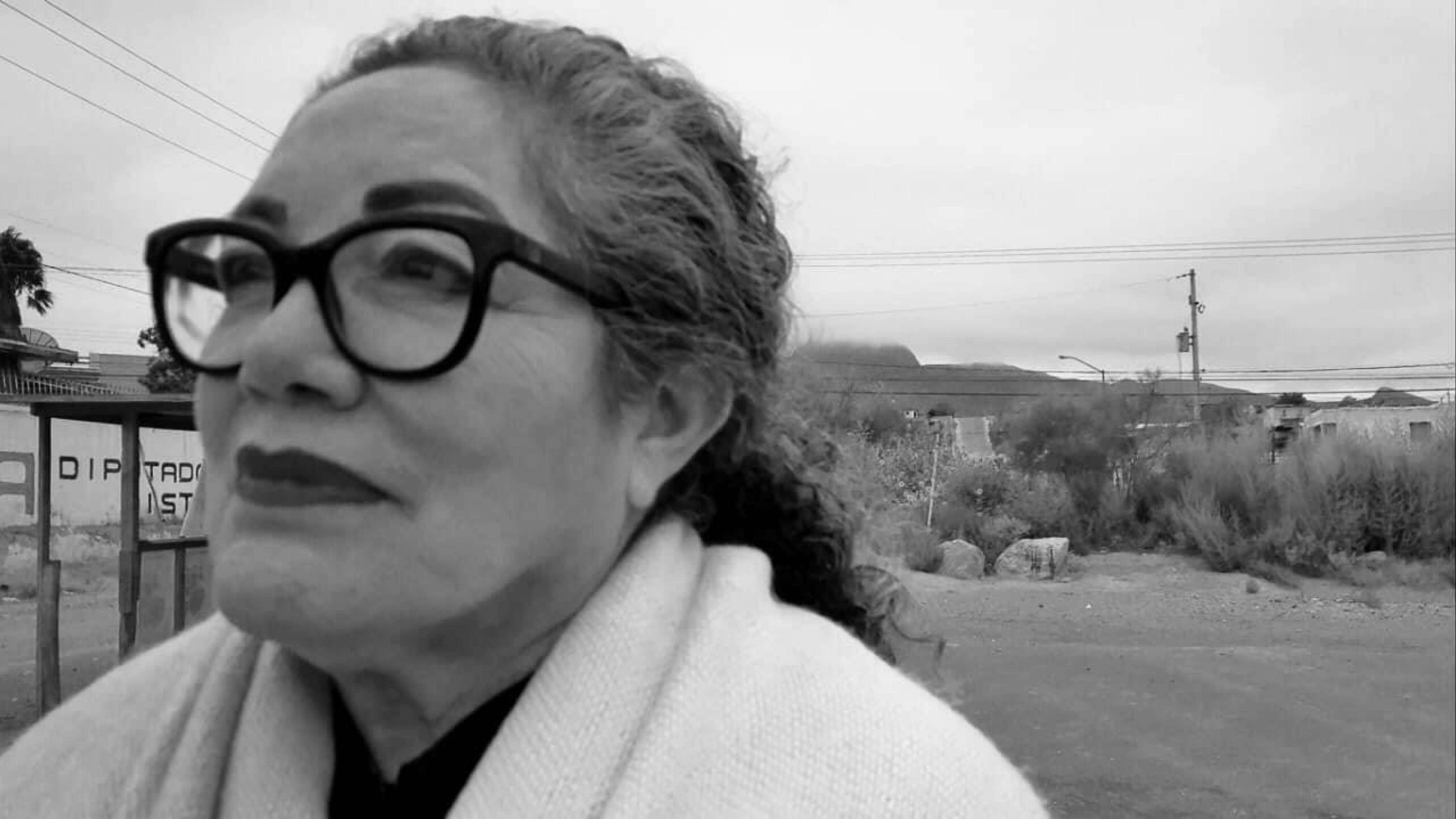 Alma R. Gonzalez, Ciudadanos comprometidos con la paz