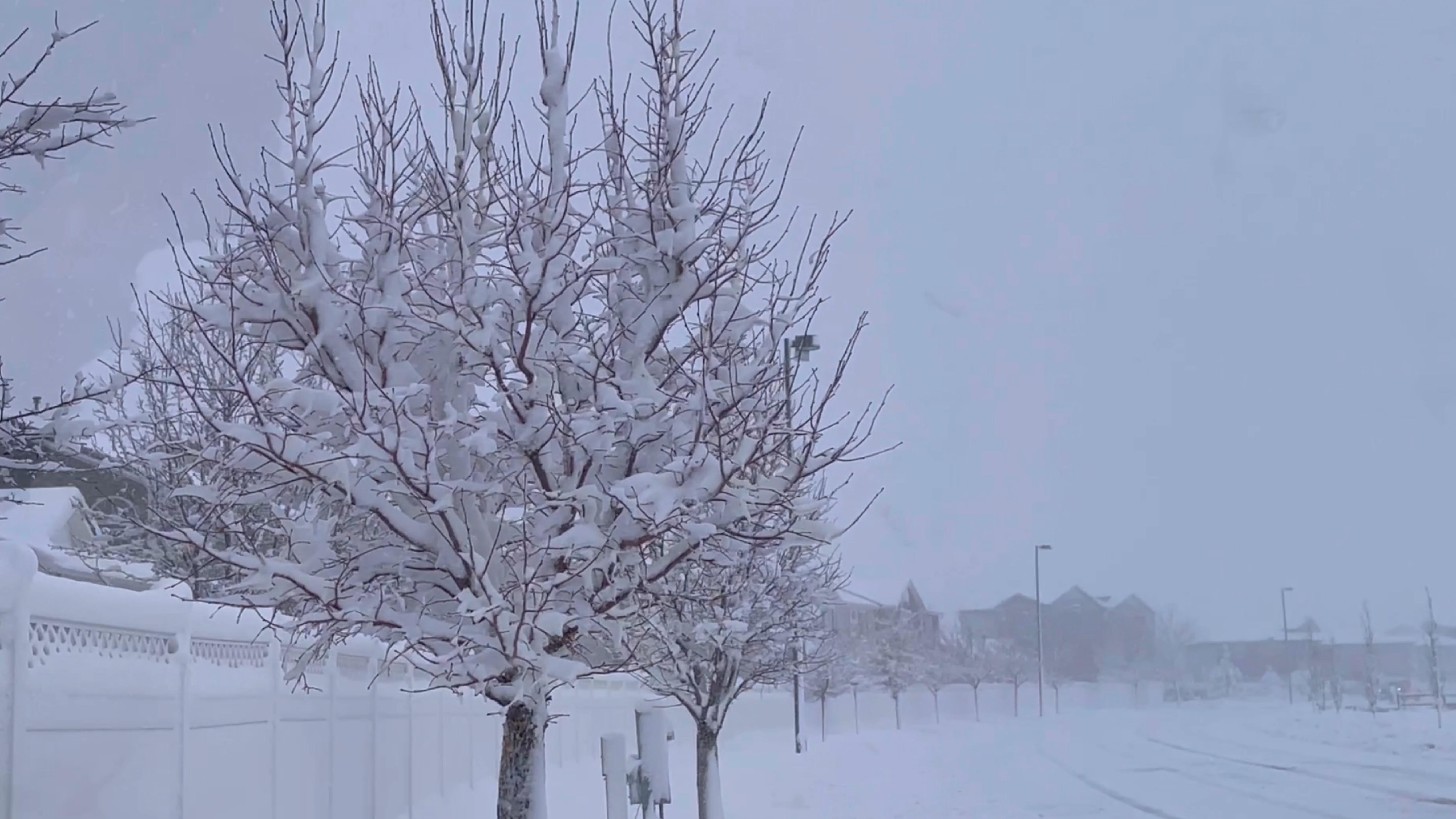 Perla Rico, Denver, nevadas y temperaturas congelantes